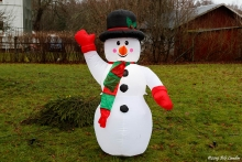 Snögubben är den enda snöinslaget (2018)